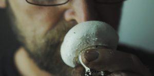 Tvedemose champignong