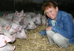 Dyrs velfærd kan måles