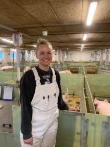 Leder i grisestalden Marie Noes Tilsbæk