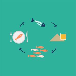cirkulær økonomi i fiskeindustrien