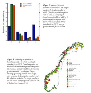 gyder i norske vandløb